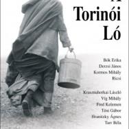 cavallo_torino_locandina