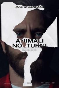 animali-notturni-2